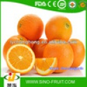 fresh fruits and vegetables in china - product's photo