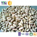 ttn chinese kidney bean price white kidney beans - product's photo