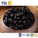 ttn dark haricot bean black kidney beans - product's photo