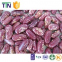 ttn lsbk light speckled purple speckled kidney bean - product's photo