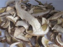 dried king bolete mushrooms - product's photo