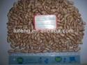light speckled kidney bean - product's photo