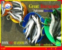 frozen whole round barracuda fish - product's photo