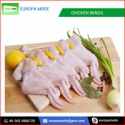 frozen chicken wing - product's photo