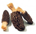 100% top quality wild morel - product's photo
