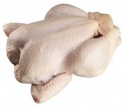 bulk export halal frozen whole chicken  - product's photo