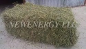 alfalfa hay in bales, single press - product's photo