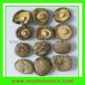 organic dried shiitake - product's photo