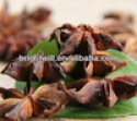 aniseed,star anise,food seasoning - product's photo
