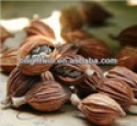 amomum,food seasoning - product's photo