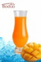 best selling concentrated mango juice - product's photo