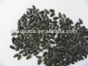 new hulled black oil sunflower oil seeds - product's photo
