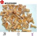 frozen chanterelle mushrooms - product's photo