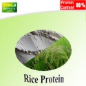 food grade organic rice protein - product's photo