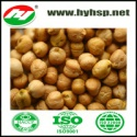 9mm chickpeas with high quality - product's photo