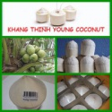 fresh young coconut - product's photo