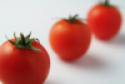 vine tomatoes - product's photo