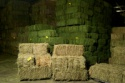 alfalfa hay in bales - product's photo