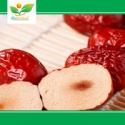 fresh red jujube - product's photo