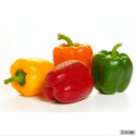 fresh california pepper - product's photo