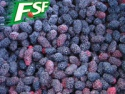 frozen iqf mulberry - product's photo