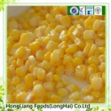 fresh canned sweet corn - product's photo