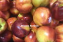 fresh nectarine white flesh - product's photo
