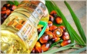 palm oil malaysia - product's photo