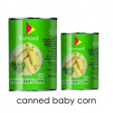 canned sweet baby young corn - product's photo