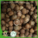 organic nuts - product's photo