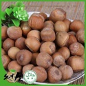 jms-hlt hazelnut ground - product's photo