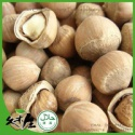 ground hazelnuts - product's photo