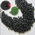 new crop black kidney beans - product's photo