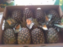 pineapples - product's photo