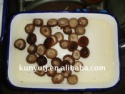 canned shiitake - product's photo
