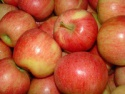 fresh red fuji apple/fresh apples available - product's photo