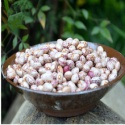 organic dried red speckled sugar beans - product's photo