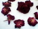 dry rose - product's photo