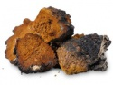 dried chaga, high quality medicinal mushroom - product's photo