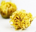china hangzhou white chrysanthemum tea manufacturers - product's photo