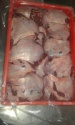 buffalo chick meat - product's photo