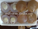 scallop with roe and half shell/sea scallop /bay scallop - product's photo