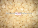 quality frozen sea scallop - product's photo