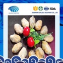 high quality fresh frozen boiled mussels meat with haccp from factory - product's photo