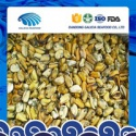 frozen mussel meat with favourable price - product's photo