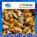 frozen blue mussels meat without shell - product's photo