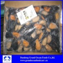 frozen cooked half shell mussel - product's photo