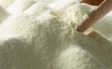 skimmed milk powder - product's photo
