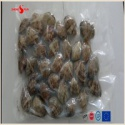 vacuum -packed short necked clam in shell - product's photo