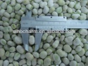 import halal foods peeled broad beans iqf frozen broad beans - product's photo